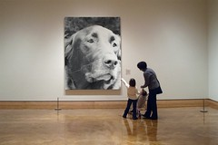 "PhotoFunia Creation:  ""Gallery Dog"""