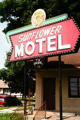 Sunflower Motel (hamacle) Tags: travel sign vintage 50mm hotel nikon neon superia motel kansas fujifilm f80 nikkor f18 n80 800 hiawatha film35mm us36 sunflowermotel