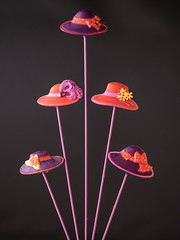 Red & Purple Hats (WVJilly) Tags: 365the2017edition 3652017 day56365 25feb17 red hat purple women