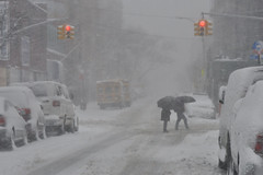 What a mess. (greenelent) Tags: snow storm winter weather white brooklyn nyc streets 365 photoaday