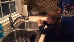 """Paul Washes the Dishes • <a style=""""font-size:0.8em;"""" href=""""http://www.flickr.com/photos/109120354@N07/32731510100/"""" target=""""_blank"""">View on Flickr</a>"""