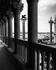 Suite veneziana (1) (acid_nam) Tags: loggia italie italia colonnato veneto lion leone todaro colonna noiretblanc biancoenero venice sanmarco piazzettasanmarco palaisdesdoges doge palazzoducale venise venezia