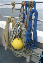 Tied up tidily (catb -) Tags: ireland boat rope ixus wexford fa buoy buoyant saltees