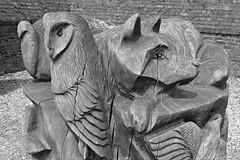 Wooden Creatures (Nomis.) Tags: wood sculpture tree bird lumix hall wooden wolf carving panasonic crop fox stump owl treestump dunham dunhammassey ribbet massey dunhammasseyhall autofix lx3