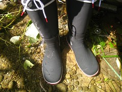 Gill Segelstiefel (wetvans) Tags: sailing boots gill wellies gummistiefel segelstiefel