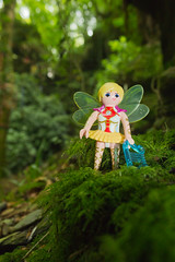 Fairy at St.Nectan's Glen (Leroysunshine) Tags: uk trees england waterfall moss woods energy cornwall wildlife magic holy caves mystical grail magical fairys faeries playmobil tintagel kernow clicks stnectansglen canoneos60d