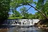 Bronx River Waterfalls (Eddie C3) Tags: newyorkcity nature landscapes bronx bronxzoo nycparks bronxriver bronxpark
