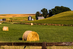 Foundation of Life (Steven Lamar) Tags: nature landscape washington farmers farm farming farmland pacificnorthwest wa crops pnw palouse stevenlamar lightfxstudio