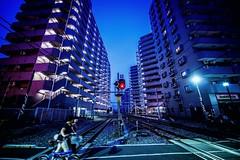 Crossing a Railroad (hidesax) Tags: railroad blue light two japan buildings nikon women crossing apartment dusk hour highrise saitama signal ageo hidesax d800e crossingarailroad