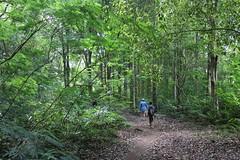 Lake Buyan North Bali Trekking (owenross653) Tags: bali trekking beratan singaraja bedugul buyan northbali tamblingan buleleng baliecotourism balivolcanoes balinorth panchasera guidedtrekking