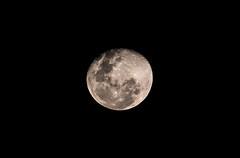 Moon of course (stu.lawn) Tags: moon canon stu lawn 70d