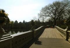 New York Bridge (Cass photo) Tags: city bridge usa newyork water america centralpark archetecure