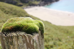 Scoor beach, Isle of Mull