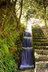 _D7T2746.jpg (MuninMoon) Tags: portugal europa wasserfall urlaub treppe madeira stufen levadawanderung 06ort 03specialevent