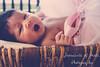 IMG_8628 (r_carla49) Tags: baby love girl sisters kiss basket princess adorable tutu pinktutu babyphotography amonthold mgp205