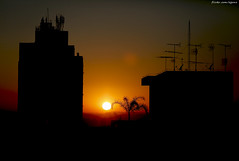 Bom dia (gon Camargo) Tags: planta sol canon laranja dia preto 5d formas bom arvore caminhos 70200 circulo egon escuro predio brilho silhueta camargo egonc