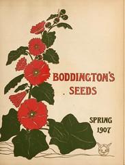 n224_w1150 (BioDivLibrary) Tags: flowers newyork vegetables gardening seeds newyorkstate shrubs catalogs perennials nurserystock nurserieshorticulture bulbsplants mertzlibrarythenewyorkbotanicalgarden bhl:page=45196245 dc:identifier=httpbiodiversitylibraryorgpage45196245 boddingtonarthurtfirm bhlgardenstories bhlinbloom