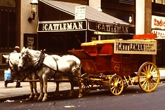 NYC 1980 (VEHICLE & BUSINESS No. 111) (streamer020nl) Tags: new york nyc horses horse newyork carriage manhattan slide olympus steak 1980 saloon 1000 cattleman