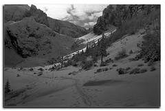 Bucegi (adi_stoica2001) Tags: minolta manual bw brasov bucegi malaiesti romania snow 35mm rokkor rodinal kodak tmax 100 film winter