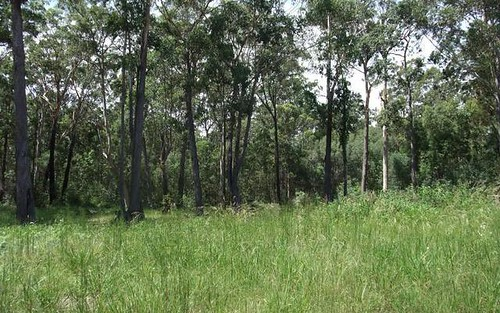Lot 20 Tree Frog Gr, Woombah NSW 2469