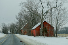 Two Sheds (gabi-h) Tags: redbarn sheds winter road rural rustic trees snow gabih princeedwardcounty architecture sky distance