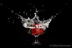 strawberry splash (Ulrike Schumann) Tags: splash2 strawberry water splashing sprouting actionshooting erdbeeren sektschale wasser spritzen fontäne tropfen pearls champagneglass