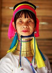 0S1A1398 (Steve Daggar) Tags: thailand chiangmai culture portrait costume longneck karinlongneck hilltribe candid