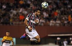 Fluminense x Criciúma - Copa do Brasil - 15/03/2017 (Fluminense F.C.) Tags: nelsonperez copadobrasil2017 fluminense giulitecoutinho criciúma edsonpassos henrique dourado
