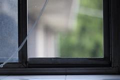 #164 (Sam Olds) Tags: window bedroom bokeh screen openwindow neighbor project365 samolds