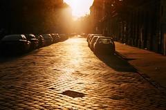 Sunset in the Eighth (habeebee) Tags: street sunset sunlight cars leaves missing hungary glow shine pavement budapest gap viii potholes goldenbrown magyarorszg pavingstones 8ker jzsefvros jozsefvaros nycker kerlet