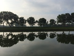 Mirrored (Linda Cronin) Tags: trees sky black holland reflection water silhouette clouds dark grey canal sheep