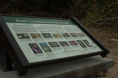 090314_4657_2000px (Weeding Wild Suburbia) Tags: ca usa gardens publicgardens citypark southpasadena spnp
