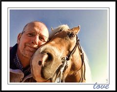 Pret voor twee (gill4kleuren - 12 ml views) Tags: horse me sarah fun gill saar paard haflinger