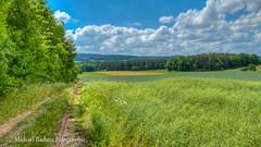 20140615-P1050722_3_4 (Micha63Fotos) Tags: landscape bayern lumix feld mittelfranken fz150 micha63