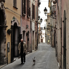 the dog -explore- (archifra -francesco de vincenzi-) Tags: street people urban italy dog chien cane square italia perro vicolo carré molise isernia archifraisernia francescodevincenzi corsomarcelliisernia centroanticoisernia photodelavie