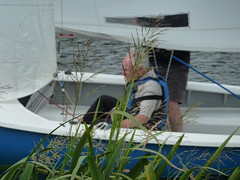 Sailing Regatta 113