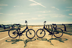 **together we're invincible (Livia Lazar) Tags: sun beach bikes esplanade southport
