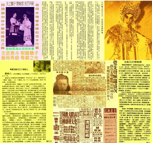 十枝梨菜の画像 p1_16