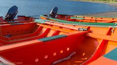 Sun on the Gunwales (Wade.J.) Tags: ocean sea orange newfoundland bay boat nikon labrador harbour cove oar wade tamron dory lark d800