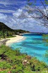 ANTIGUA (Michela Chemello) Tags: travel sea sky panorama seascape verde green beach clouds canon relax eos bay nuvole mare view blu natura cielo sands azzurro colori spiaggia vacanza michela turners sabbia 6d vegetazione visione meraviglia chemello
