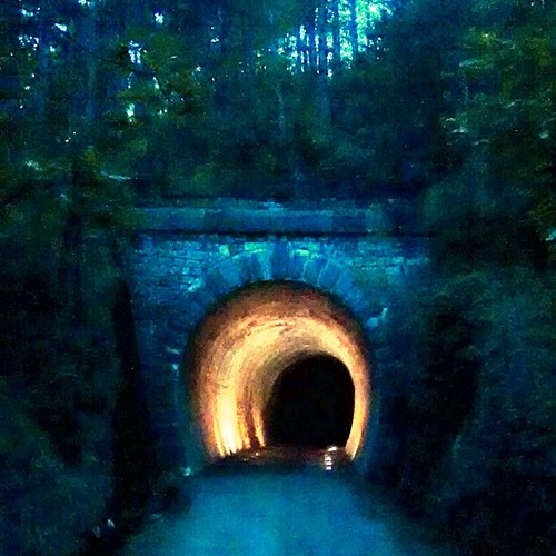 #running @ #Trieste #ciclopedonale  #galleria #tunnel #night #woods