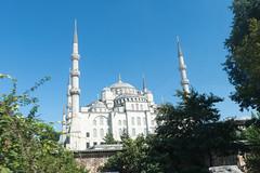 20140728-095746_DSC2571.jpg (@checovenier) Tags: istanbul turismo istambul turchia moscheablu intratours voyageprivée