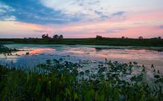 IMG_5162.jpg (wwang5) Tags: sunset illinois unitedstates naperville springbrook dupagecountyforestpreserve springbrookforestpreserve