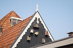 Houses for birds (C.Tanghe) Tags: houses holland birds frisland