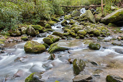 Rocks and Water 2 (Mr. Low Notes) Tags: nature water creek waterfall nationalpark moss woods rocks whitewater waterfalls gatlinburg ferns roaringfork greatsmokymountainsnationalpark 70d