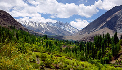 Phandar Valley - Wonder Valley (NotMicroButSoft (Fallen in Love with Ghizar, GB)) Tags: pakistan summer nature hindukush ghizar phandar gilgitbaltistan