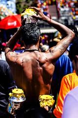 Kavadi Attam (Thaipusam) (jeff j.h.) Tags: malaysia kualalumpur thaipusam religion kavadi hindu hinduism indian india travel travelphotography streetphotography temple shrine holy festival will photography photo body muscles back man colour vibrance bokeh primelens 50mm composition ngc natgeoyourshot asia earthasia visitmalaysia visitkualalumpur
