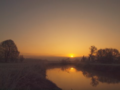 GOLDEN LIGHT IN WINTER 2017/ P2193429 (hans 1960) Tags: outdoor nature natur sun sunrise sonne sonnenaufgang sol soleil atardecer licht light landschaft landscape golden fluss river himmel sky trees bäume stille stillness harmony felder mirrow spiegelung germany