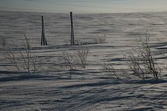 Russia, Murmanskaya oblast, Teriberka (misus1504 (Elena)) Tags: weather water whitesea russia travel thearcticocean teriberka sky day light street ship dark landscape canon color snow february murmanskayaoblast