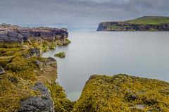 Dunvegan Head (w.mekwi photography) Tags: longexposure seaweed water scotland rocks isleofskye glendale lochpooltiel fucusspiralis dunveganhead lowermilovaig meanish leegndfilters tenstopper wmekwiphotography mekwicom